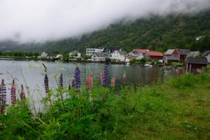 Hellesylt Stryn Geiranger Norway 22Jun2013-4780