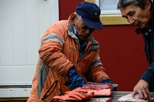 Qaqortoq Blog-7162
