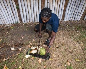 BLOG Dominica Bois Cotlette 17Feb2015-0285