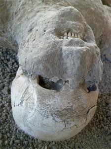 Pompeii Sandler-2
