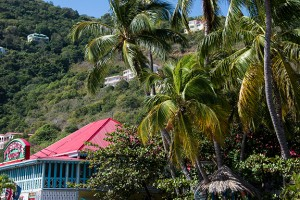 BLOG Road Town Tortola 2Feb2016_DSC3904
