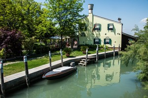 BLOG VENICE TORCELLO 6May2016-5573
